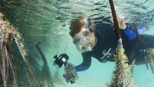 famous marine biologists