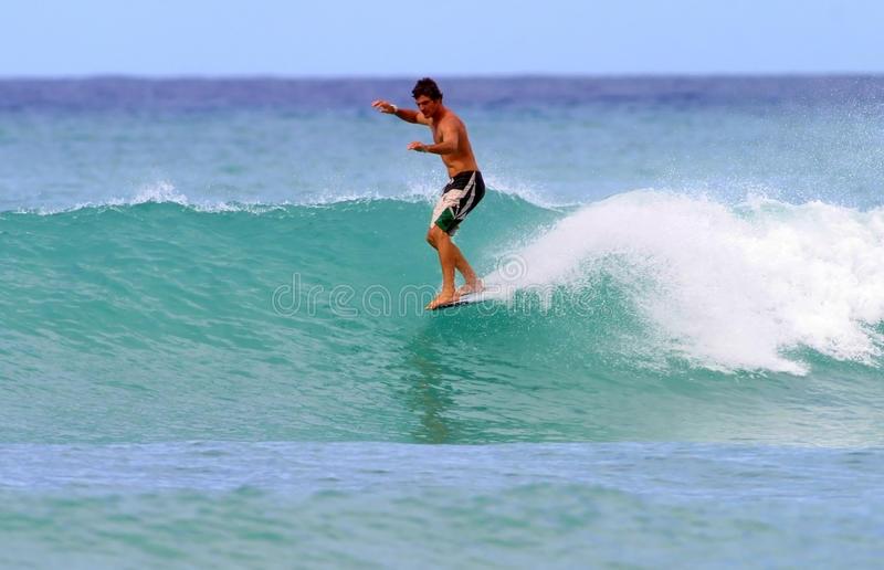 surf hawaii - surfboards on Waikiki Beach photo