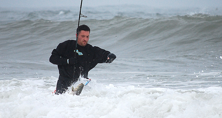 Pounding Surf and Nukin Wind surfing big photo